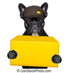 delivery post dog - postal dog delivering a big yellow...