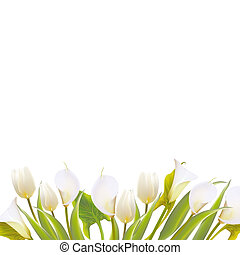 Spring flowers backround with text lettering illustration