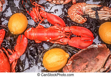 Lobster at the fish market at the Cours Saleya in Nice, Cote...