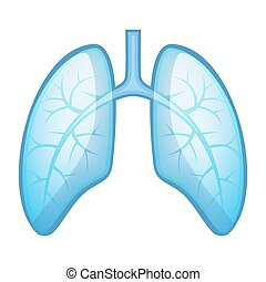 Human Health Lungs and Bronchi Vector Illustration