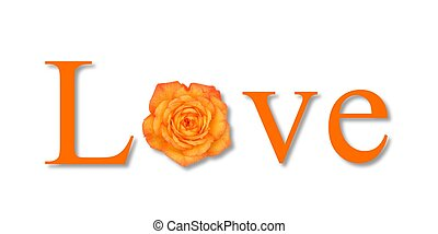 Love Flower Orange - The text love with a flower on white...