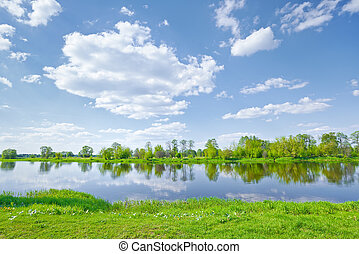 Sunny spring landscape by The Narew River.