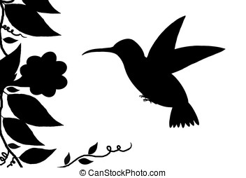 hummingbird silhouette - illustration, black silhouette of a...
