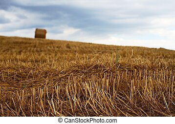 Hay and moody sky - Straw bale in a field under moody sky