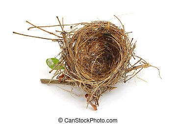 bird nest isolated on white