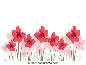 Poppy flowers isolated on white background. Illustration format.