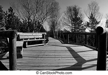 Bench on the wooden path