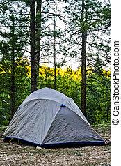 Campsite in Kaibab Forest WIlderness, Arizona