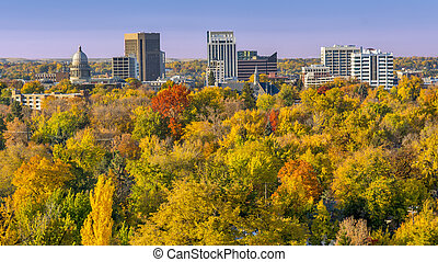 City of trees Boise Idaho in the fall - Carpet of autumn...