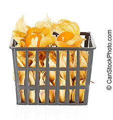 Physalis berry fruits with husk in basket