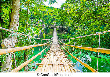 Bamboo pedestrian suspension bridge over river in tropical...