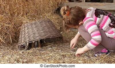 little girl play with puppy pet