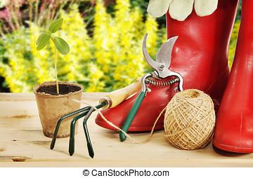 橡膠, 工具, 花園, 靴子, 秧苗
