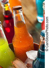 Assorted Organic Craft Orange Soda with Cane Sugar