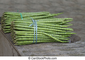 Moringa oleifera or drumstick vegetable - Moringa oleifera...