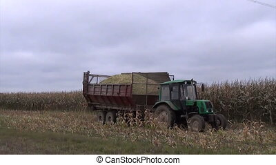 tractor trailer corn - Tractor with trailer full of freshly...