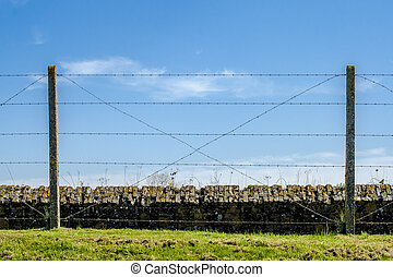 barbed wire trench of death world war one