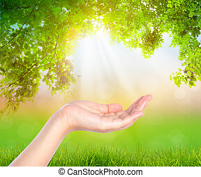 Open hand  over nature background