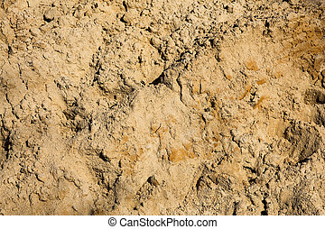 Sandy background - The sandy background or texture
