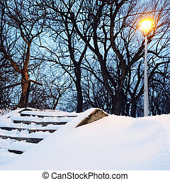 Streetlight and trees in the snowy park - Streetlight and...