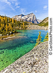 Scenic Lake O'hara of Yoho National Park
