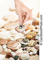 hand picking up shell with black pearl from sea - Closeup...