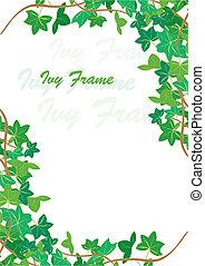 Ivy frame - spring Ivy corners background, vector...