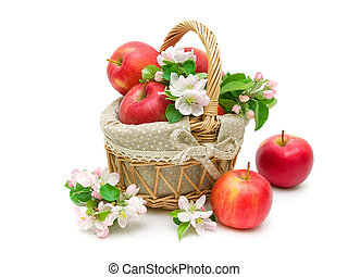 Apples and apple-tree flowers isolated on white background -...