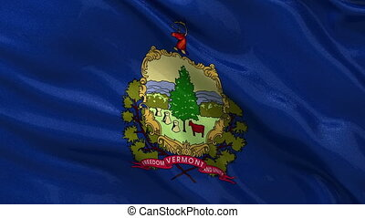 US state flag of Vermont loop - US state flag of Vermont...