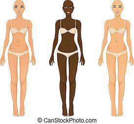 Vector female models