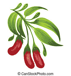 decorative ornament red berries - hand drawn illustration in...