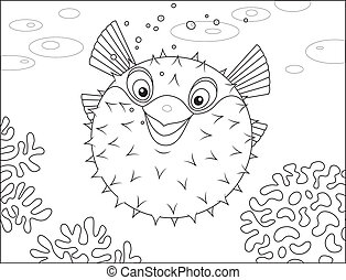 Puffer fish - Puffer swimming on a coral reef in a tropical...