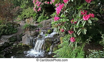 Waterfall in Backyard Garden with Ferns Moss and Pink...