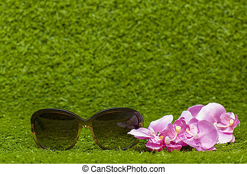 brown Sunglasses on greeen grass - brown Sunglasses and...