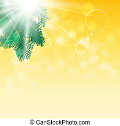 Leaves of palm tree on background