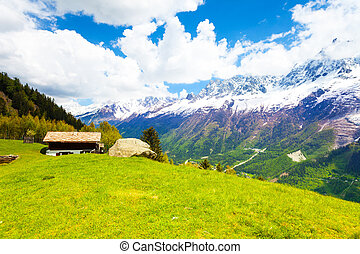 Meadow near Mont Blanc, Alps in summer - Landscape with...