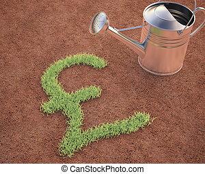 英國貨幣, 磅, 培養