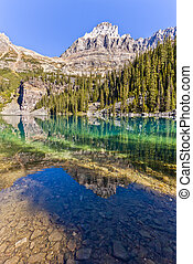 Scenic Reflections on Lake Ohara, Near Banff, Canada