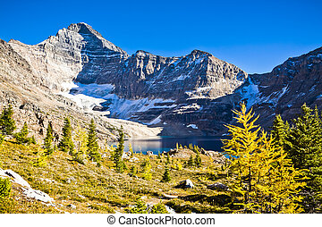 View of Canada's Remote Mountains in Autumn,