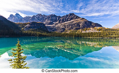 Beautiful Lake Ohara