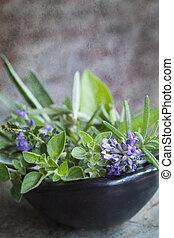 Bowl of Fresh Herbs with Grunge Effects - Bowl of fresh...