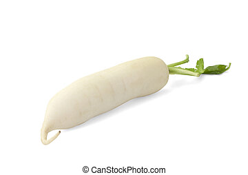 Daikon radish isolated on white background with path