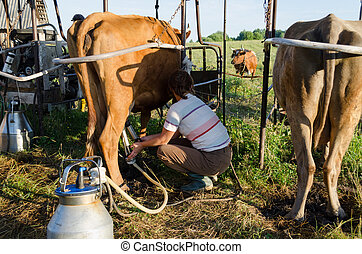 farmer using new technologies in milking cows - young farmer...