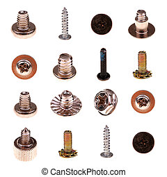 screws - assortment of the screws over white background