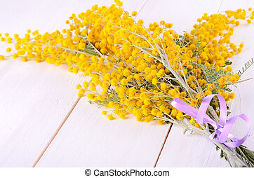 Mimosa flowers on table - Mimosa flowers on white wooden...