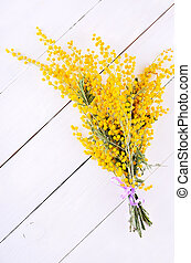 Mimosa flowers on wooden table - Mimosa flowers on white...