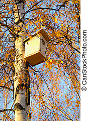 Birdhouse on birch tree