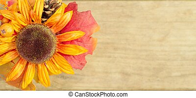 Autumn Banner - Single sunflower in autumn colors on a...