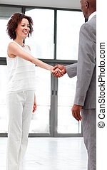 Business people shaking hands in agreement - Young business...