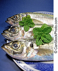 Mackerel fish aligned on a plate with spearmint.